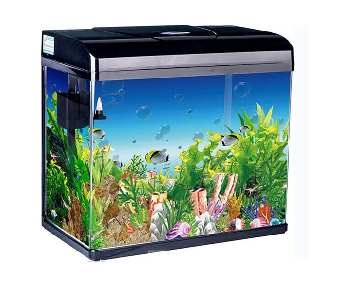 Curved Modern Bar Counter Aquarium Fish Tank